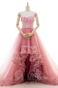 Cocomelody Asymmetrical Chapel Train Tulle Wedding Dress