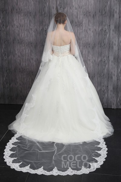 Fantastic One-tier Lace Edge Tulle Ivory Cathedral Veils CV0015012
